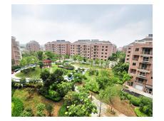 上海大花园